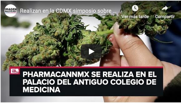 11va Conferencia de Cannabinoides en Medicina de IACM