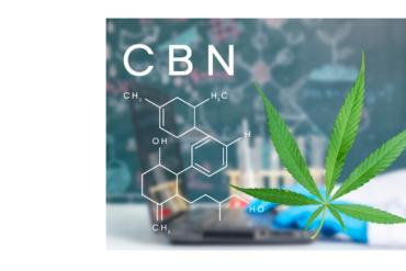 La investigación científica demuestra que el THC y el CBD promueven una flora intestinal saludable